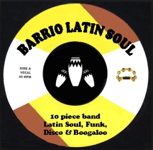 Boogaloo single web template
